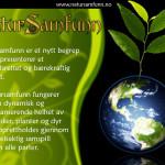 natursamfunn_presentasjon